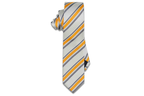 Turner Stripes Silk Skinny Tie