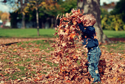 child playing in pile of leaves
