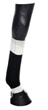 EquiFlex Blue Line (lower leg)