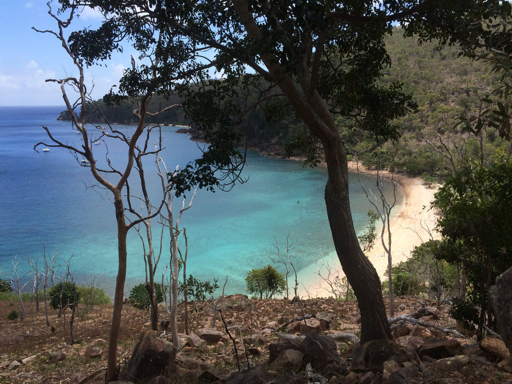 Exploring private beaches on Hayman Island