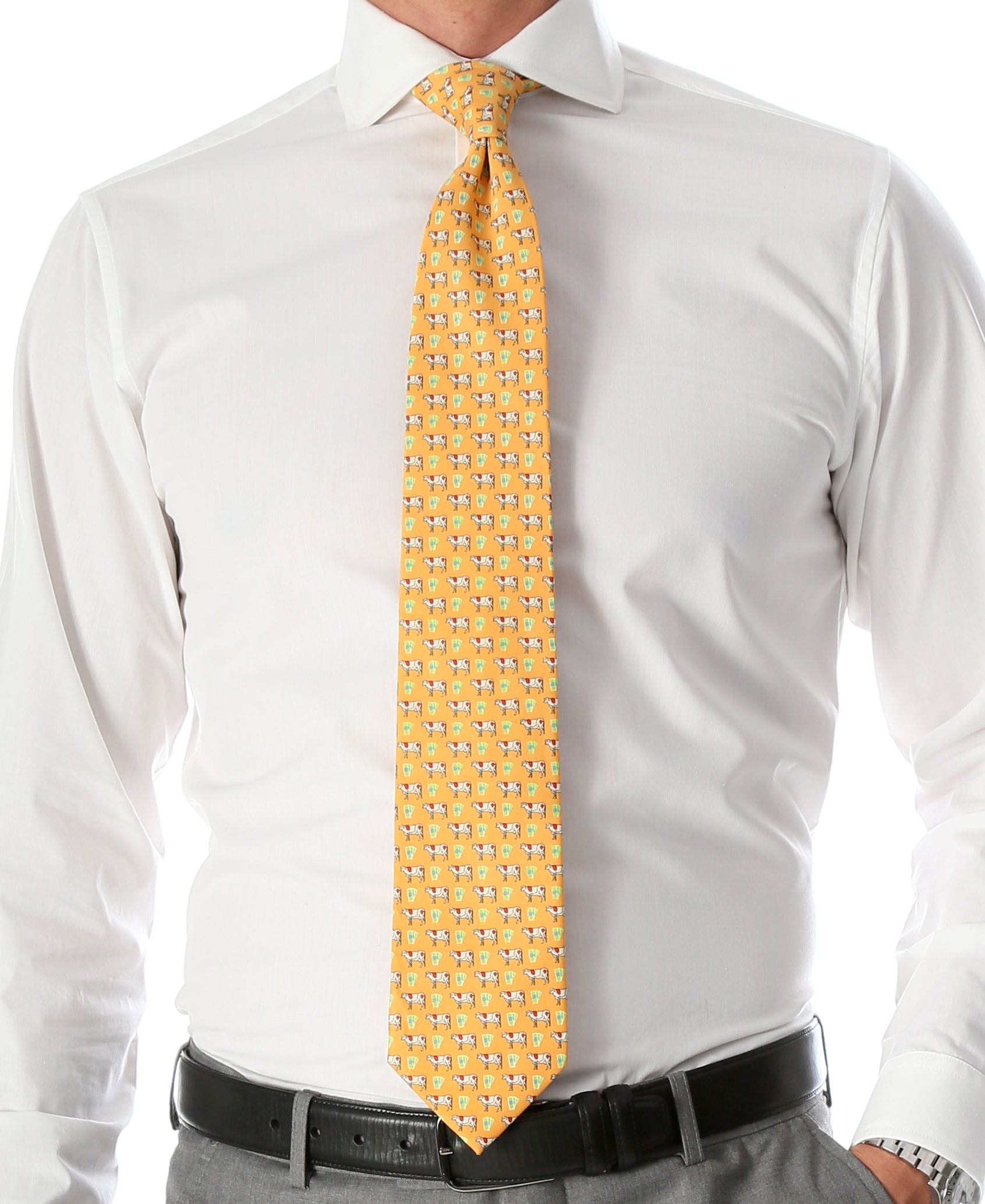 Cash Cow Citrus Necktie with Handkerchief Set