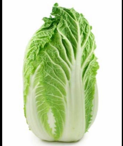 Cabbage - Wombok