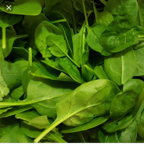 Baby Spinach - 1.5kg Box
