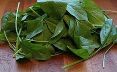 Baby Spinach - 100gms