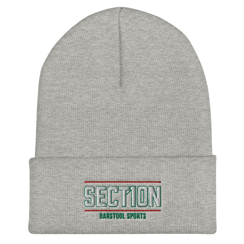 Section 10 Beanie