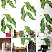 Wallpaper Banana Leaves Wallpaper