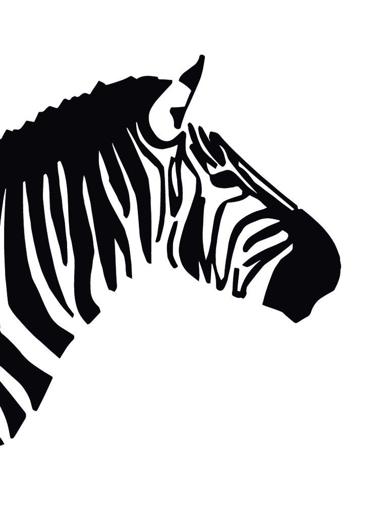 Greeting Card Zebra Greeting Card