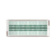 Lucite Trays 11x4 / Green Interstellar Lucite Tray