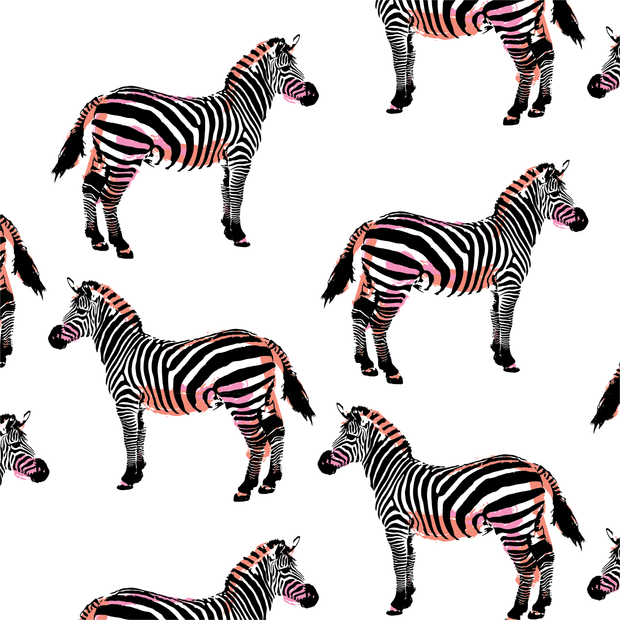 Wallpaper Zebras Wallpaper