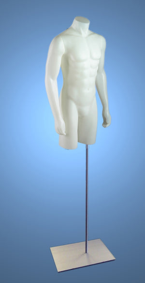 Male 3/4 Torso on Stand with Magnetic Arms