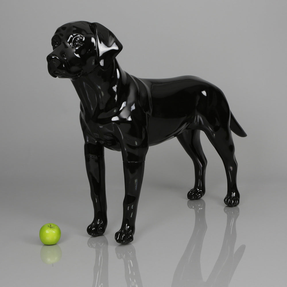 Labrador Dog Mannequin: Matte White or Glossy Black