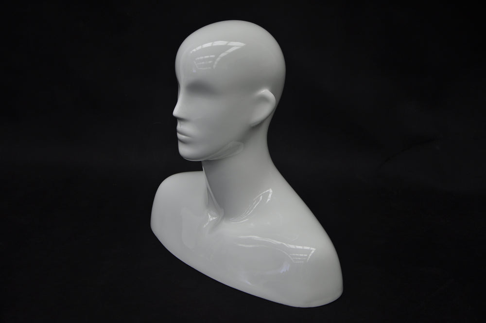 Dante: Male Mannequin Head