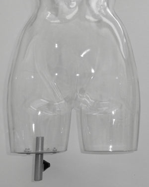 Clear Female Half-leg Torso with Shoulder Caps