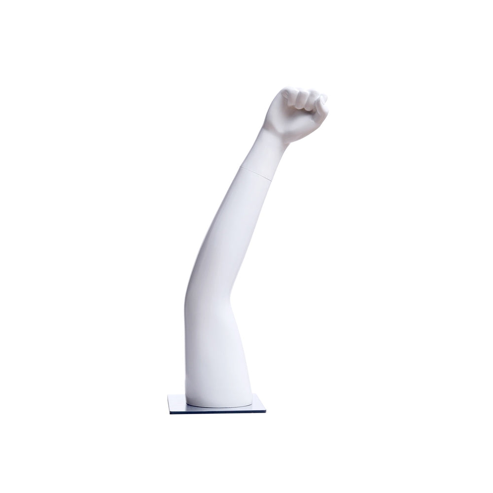 Tabletop Mannequin Arm 1