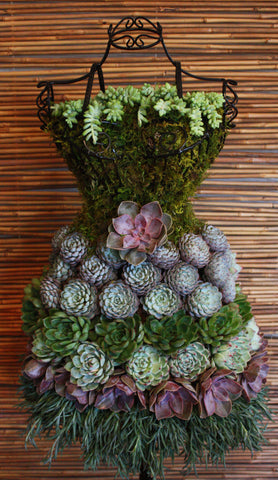 Succulent Garden Dress Form Display - DIY Tutorial