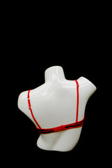 Female Bra Form -- White