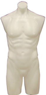 White Plastic Male 3/4 Torso: With or Without Stand