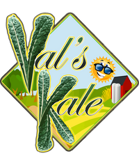 Val's Kale Chips; dehydrated, vegan, and gluten-free