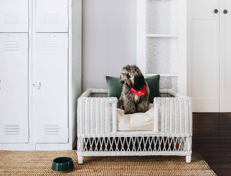 Dog Bed Woven (Dec)