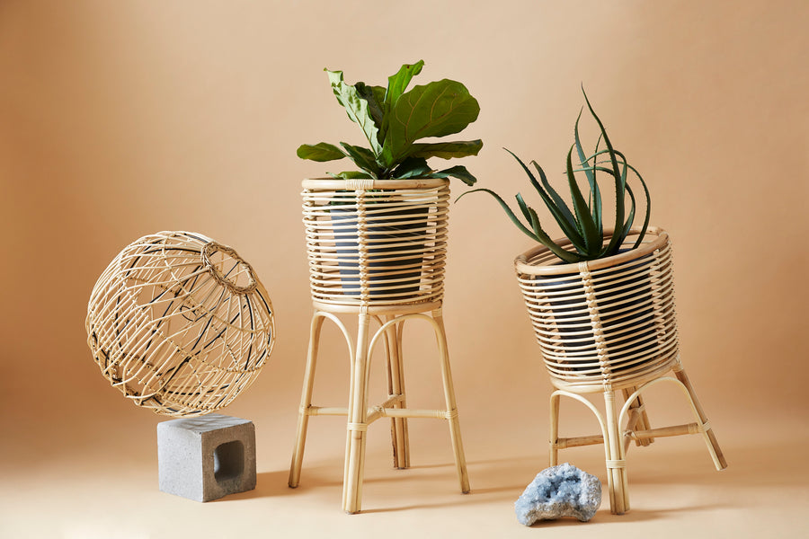 Plant Stands (Square / Open weave April delivery)