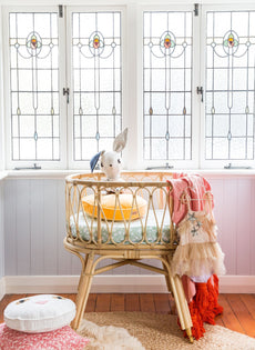 Paris bassinet - End jan/ feb
