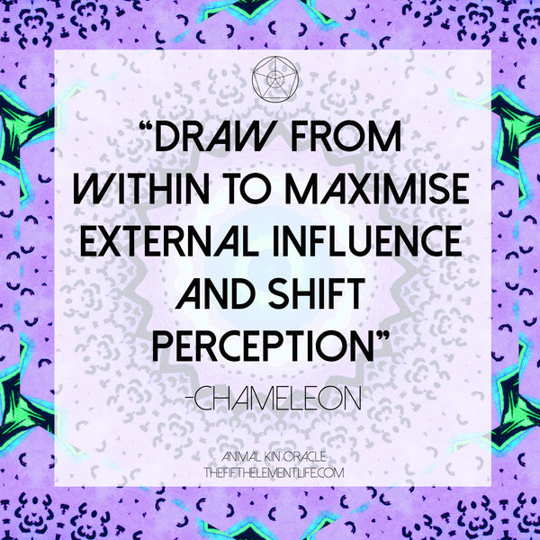 chameleon quote sarah wilder the fifth element life