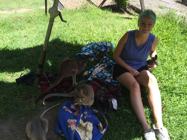 sarah wilder wallaby rescue