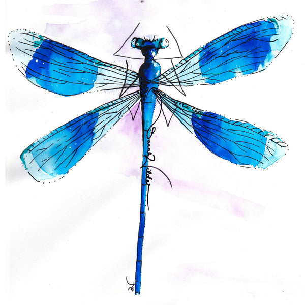 dragonfly illustration sarah wilder the fifth element life
