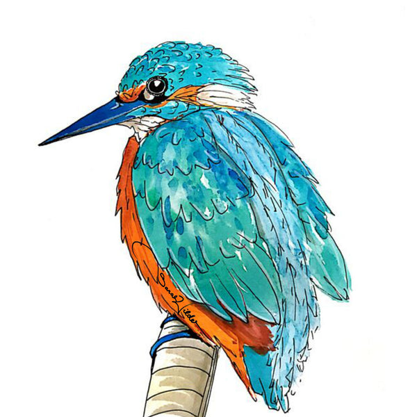 KINGFISHER ILLUSTRATION SARAH WILDER THE FIFTH ELEMENT LIFE