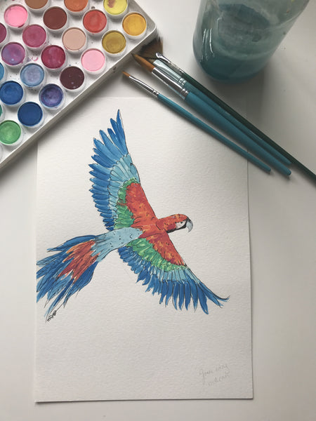 MACAW - ORIGINAL WATERCOLOUR ANIMAL PORTRAIT BY SARAH WILDER