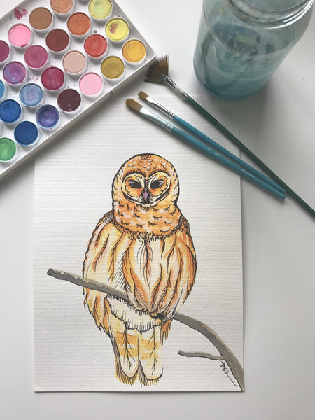 OWL - ORIGINAL WATERCOLOUR ANIMAL PORTRAIT BY SARAH WILDER