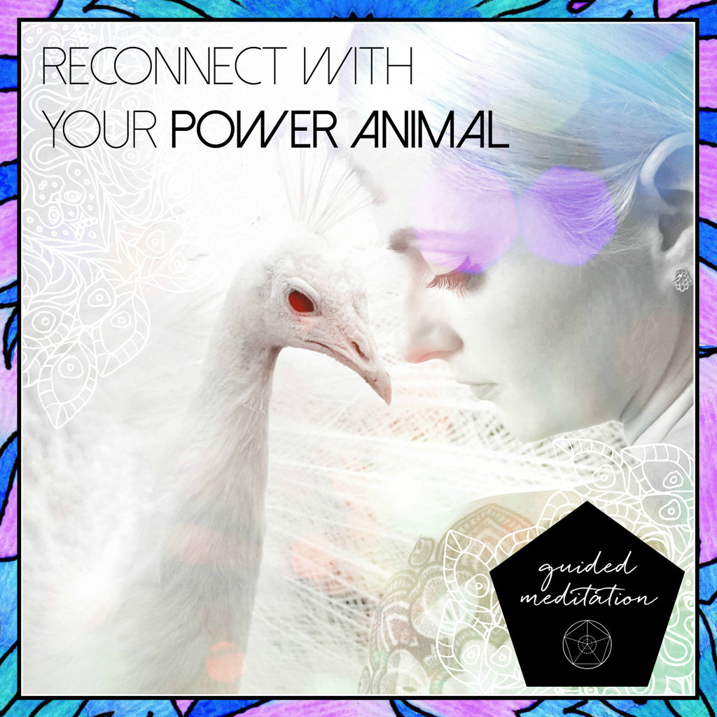 RECONNECT WITH YOUR POWER ANIMAL - GUIDED MEDITATION TRACK