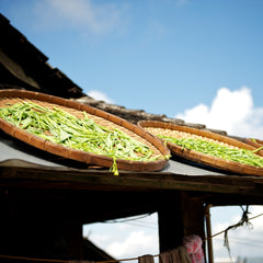 tea leaves drying on rooftop