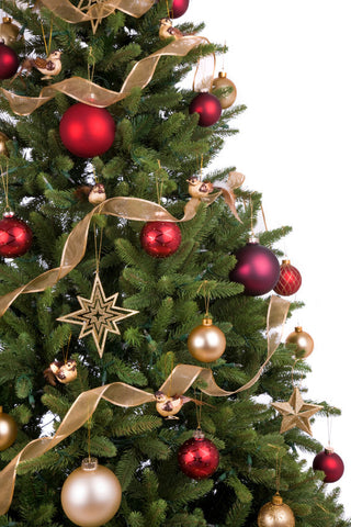 Real Christmas Tree Delivery London & UK - Order Xmas Trees Online ...