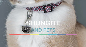 WHY YOUR PET NEEDS SHUNGITE