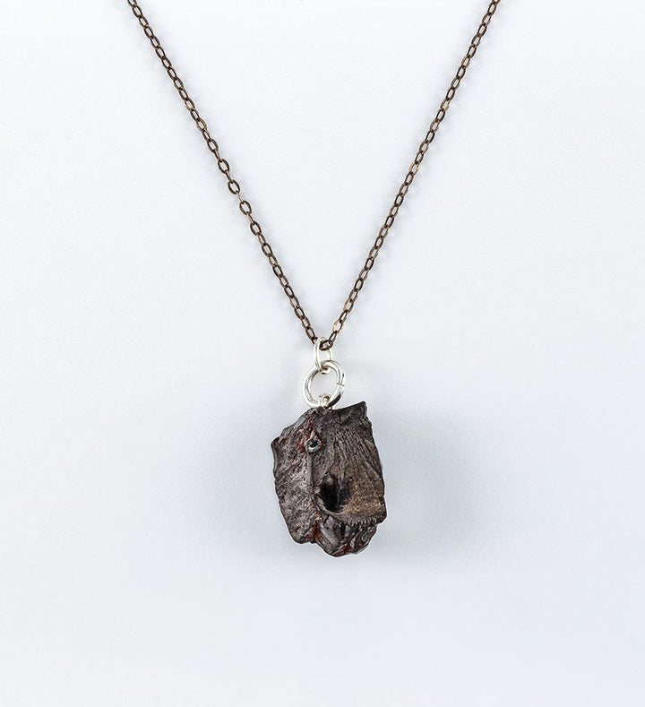 elite shungite necklace, silver chain