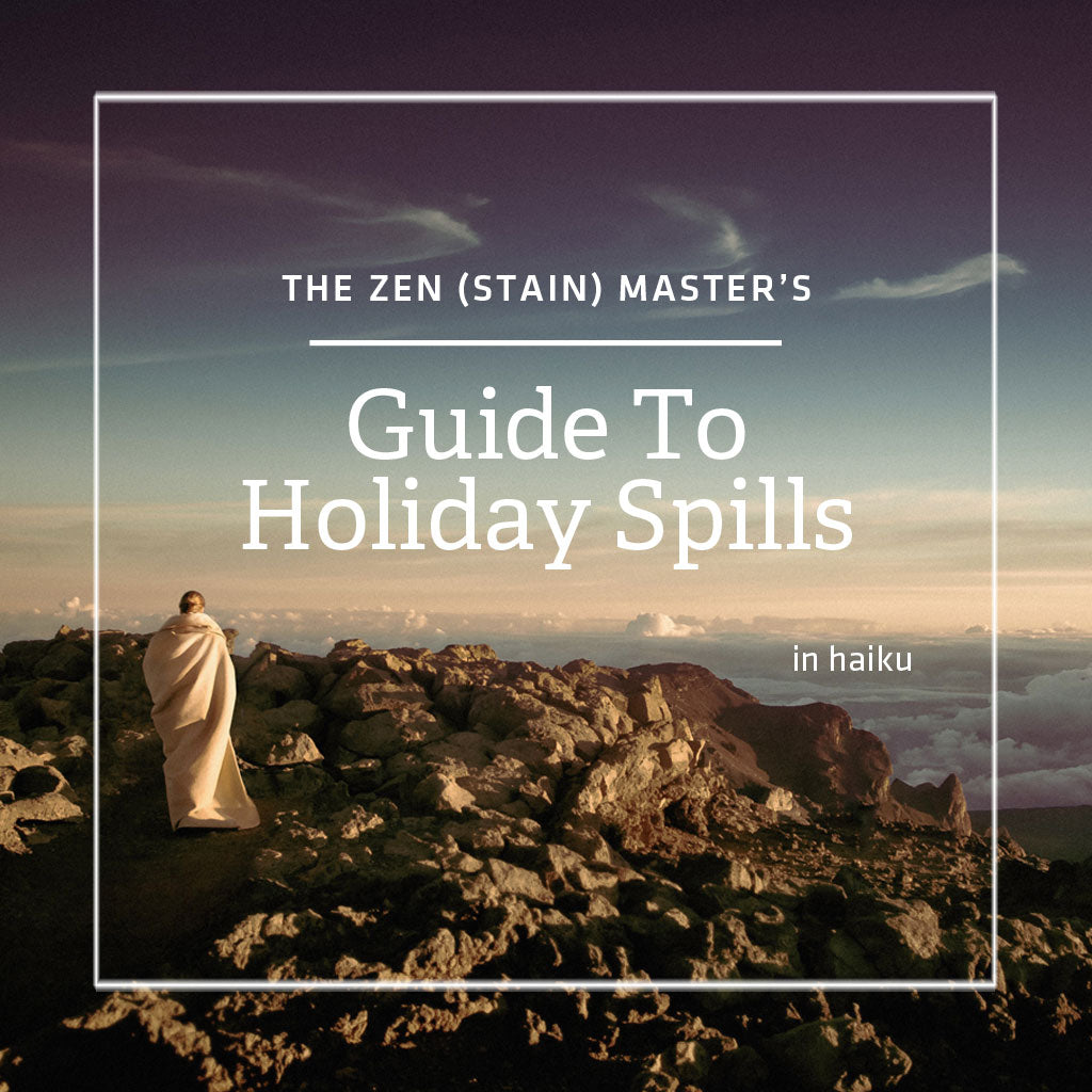 The Zen (Stain) Master's Guide to Holiday Spills