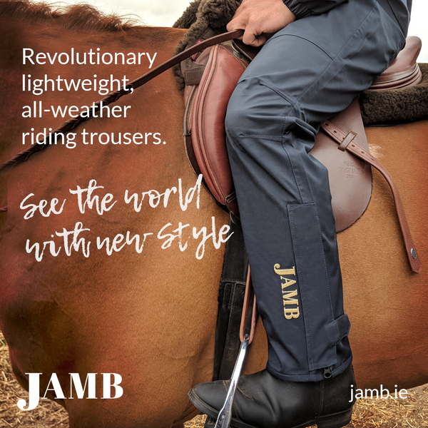 The Jamb Riding Trousers - Navy - All Weather Trousers