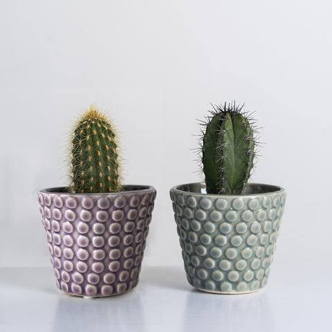 Dot texture mini glazed pots
