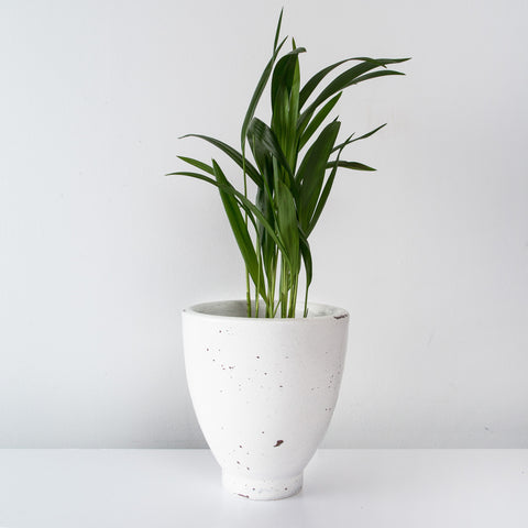 White Teracotta Flower Pot
