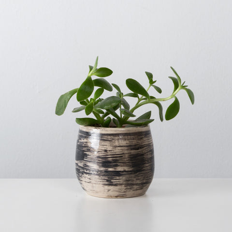 Charcoal ceramic espresso cup / plant pot By SkandiHus