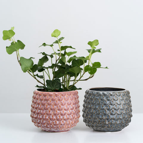 Two Textured round plant pots (LAST 1)