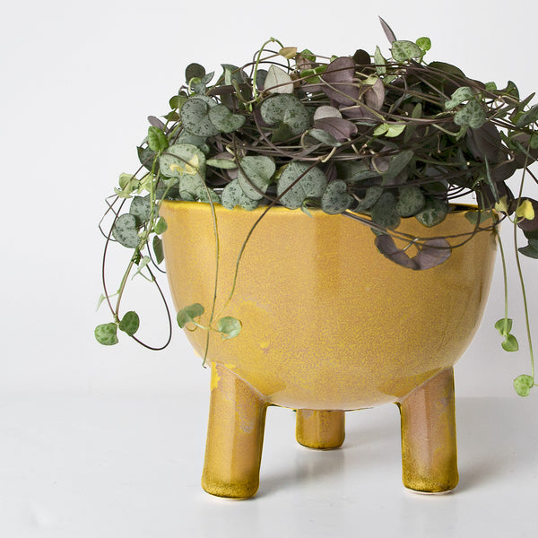 Pale mustard glazed Stoneware plant pot (Low stock)