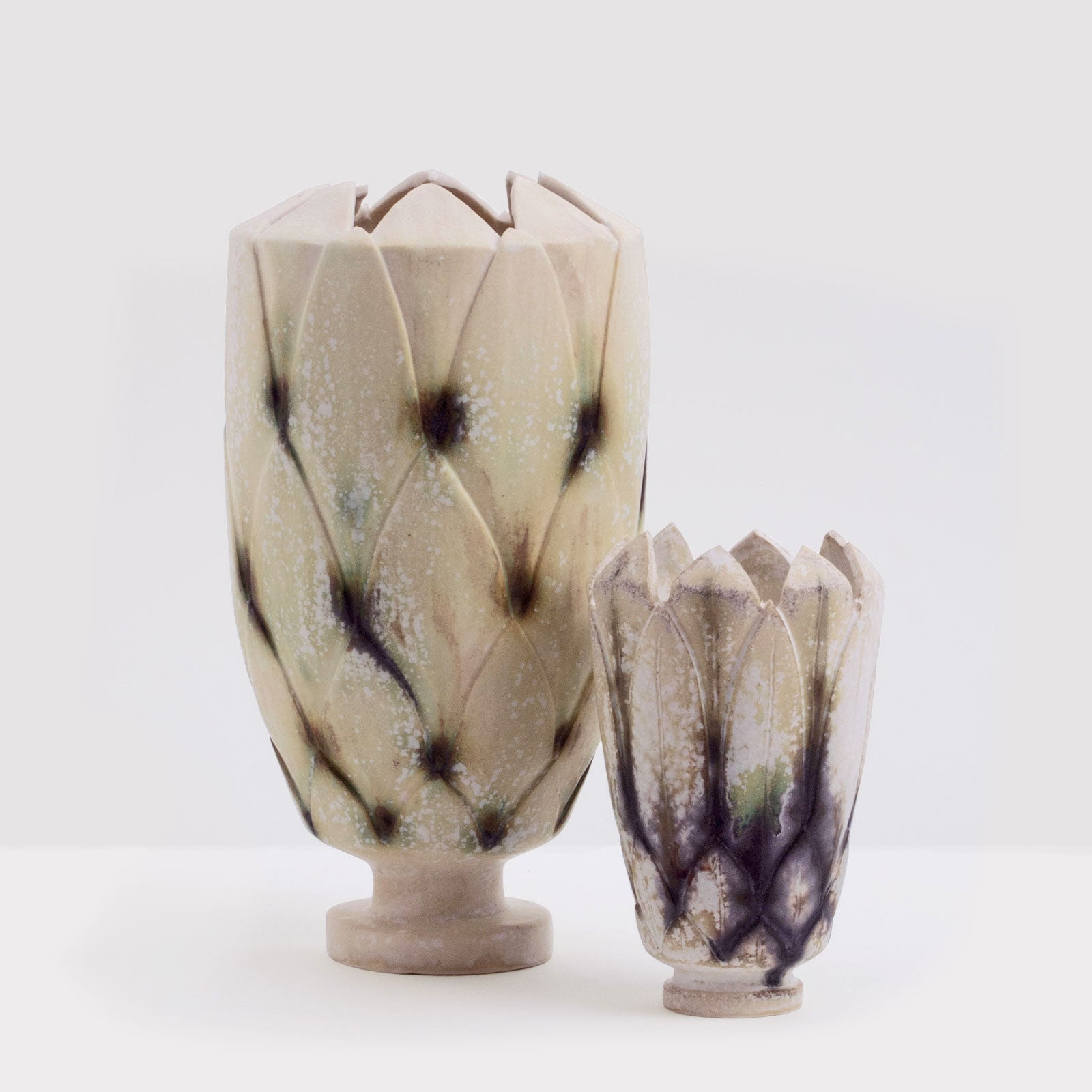 Handmade Protea pot in shell by Caro Gates