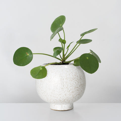Natural glazed Stoneware Plant pot