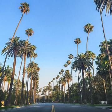 Our Favorite Spots in Los Angeles