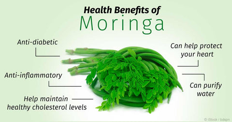 MORINGA BENEFITS: TOP 10 HEALTH & BEAUTY BENEFITS