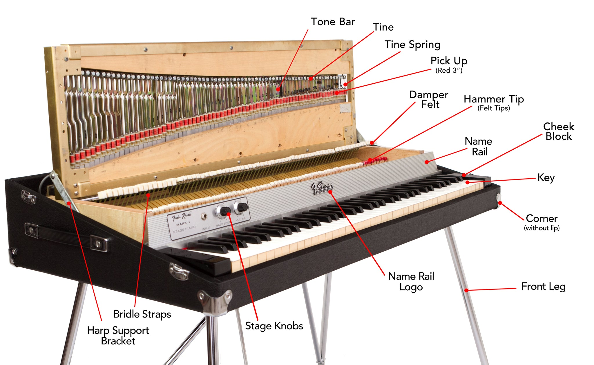stage_diagram_inside_2048x2048?14125626970668397892 fender rhodes piano diagram vintage vibe piano diagram at sewacar.co