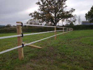 Horse Fencing: 11 Options & What to Consider When Buying