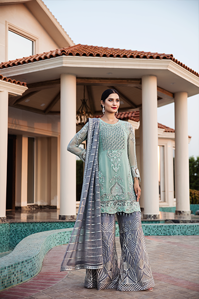 Zeenat Chiffon Collection by Zebtan Vol-3 – ZN 04